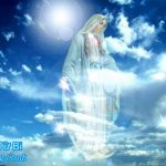 Album Thánh Ca Mừng Đức Mẹ Hồn Xác Lên Trời