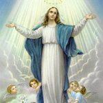 Nhạc Thánh Ca Về Đức Mẹ Hay Nhất Của Lm Nguyễn Sang