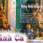 Album Bóng Nhỏ Giáo Đường – Album Nhạc Giáng Sinh Hay