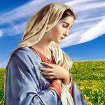 Hãy Thắp Sáng Lên Album Thánh Ca Chọn Lọc Hay Nhất