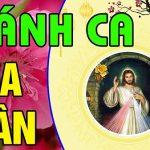 Thánh Ca Mùa Xuân Lk Dâng Chúa Ngày Xuân