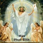 Tri Ân Lòng Chúa Xót Thương – Bích Phương DN – Nhóm BCM
