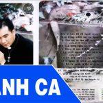 Album Vol 7 Lời Tạ Tội Của Đá – Tuyển Tập Thánh Ca Lm Nguyễn Sang